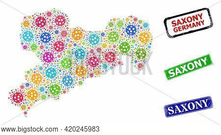 Vector Bacterium Mosaic Saxony Land Map, And Grunge Saxony Seals. Vector Colorful Saxony Land Map Mo