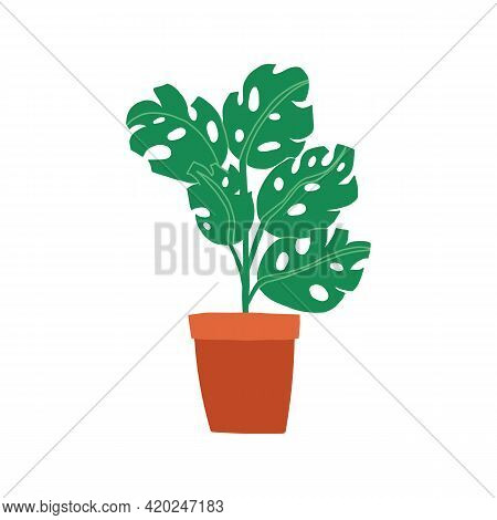 Stylish Living Room Interior Decoration, Potted Cheese Plant Or Monstera Exotic Palm.
