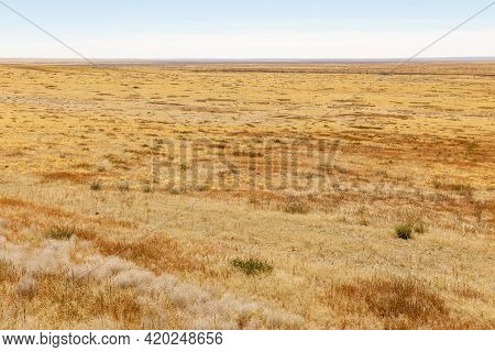 Mongolian Steppe In Autumn. Yellow Dry Grass In The Steppe. Desert Landscape.