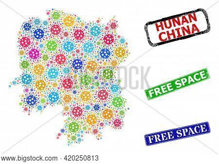 Vector Bacterium Collage Hunan Province Map, And Grunge Free Space Seals. Vector Vibrant Hunan Provi