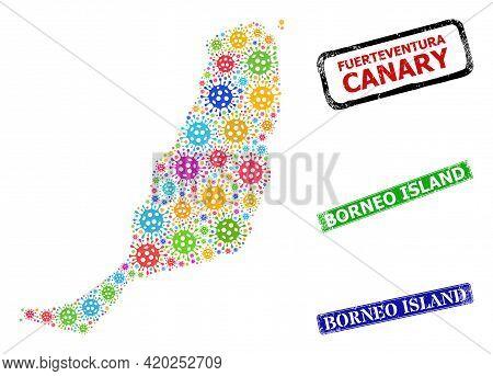 Vector Coronavirus Mosaic Fuerteventura Island Map, And Grunge Borneo Island Badges. Vector Multi-co
