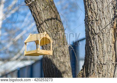A Beautiful Wooden, Handmade Bird Feeder Hangs High On A Tree In A City Park Near Residential Buildi