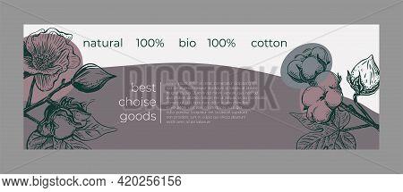 Sketch Cotton Flower Sketch Card For Decoration Design.nature Background Vector. Greeting Card Illus