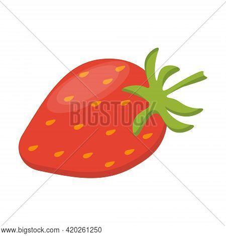Whole Strawberry Fruit. Whole Fresh Fruits On A White Isolated Background. Flat Vector Illustration.