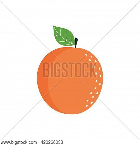 Vector Illustration Of Apricot In Flat Style Isolated On White Background, Orange Fruit With Leaf In