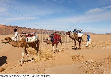 Errachidia Province, Morocco - October 22, 2015: Camel Caravan Goes Through The Sahara Desert. The W