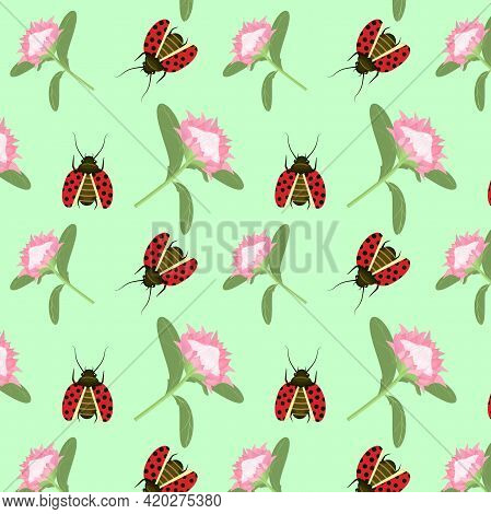 Spring-summer Vector Pattern With A Protea Flower And A Ladybug On A Soft Blue Background
