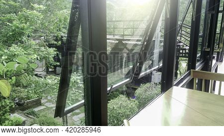 Green View Beside Window In Office, Flare Light Through The Window In The Morning, Stay Relax With Q