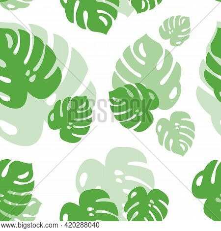 Tropical Seamless Pattern From Monstera Leaves. Background From Green Tropical Leaves With Transpare