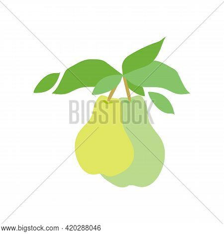 Fruit Pear Branch. Stock Vector Illustration Isolated On White Background. Two Pears Hanging On Bran
