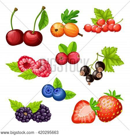 Colorful Cartoon Berries Icons Collection With Cherry Gooseberry Strawberry Cowberry Cranberry Bilbe