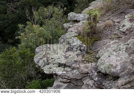 Rocky Outcrop Overlooking Green Forested Valley Below