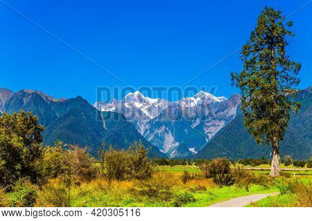 Dirt road to Lake Matheson. Snow-capped peaks of Mount Cook and Mount Tasman. New Zealand, South Island. The most beautiful nature in the world