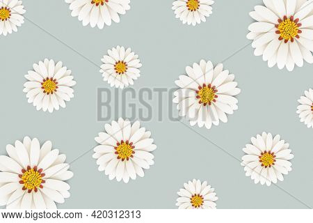 White daisy flower on light blue background