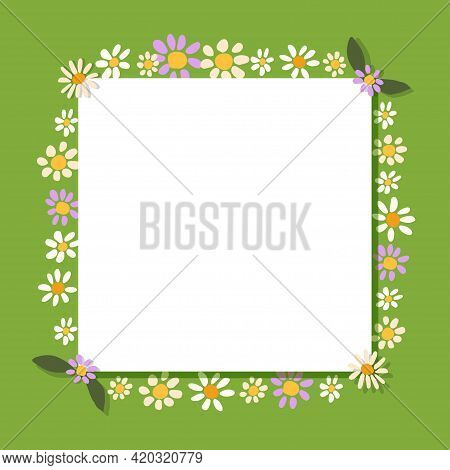 Frame Border Design With Cute Daisy And Chamomile Flowers. Greeting Card Or Certificate Template. Ve