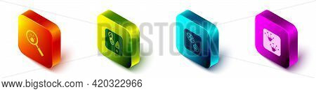 Set Isometric Paw Search, Human Footprints Shoes, And Frog Paw Icon. Vector