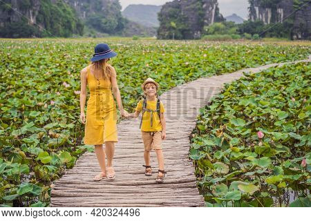 Mother And Son In A Yellow On The Path Among The Lotus Lake. Mua Cave, Ninh Binh, Vietnam. Vietnam R