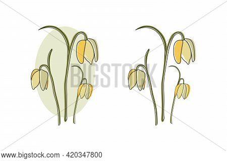Tender Bell Flowers Summer Spring Line Art Illustration