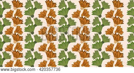 Wild Meadowflower Blossom Seamless Vecor Border. Banner With Abstract Ochre And Sage Green Alternati