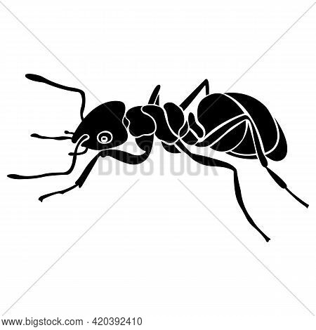 Silhouette Of A Black Ant Insect. Linear Tattoo Style. Design Suitable For Insect Lover Logo, Parasi