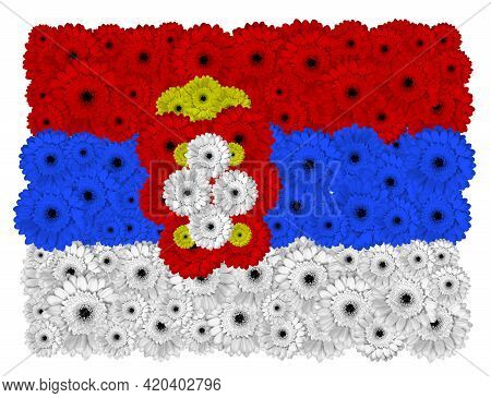 Serbian Flag Made Of Gerbera Flowers, Isolated On White