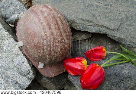Miner's Helmet. Memory Of The Death Of Miners. Flowers Tulips On Stones.