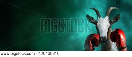 Goat With Boxing Gloves In A Dramatic Smoke Background With Copy Space. Greatest Boxer Conceptual Th