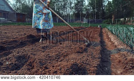 Plowed Field And Seeded. Farmers' Farmland. Long Ridges Of Beds. Fertile Lands, The Country's Econom