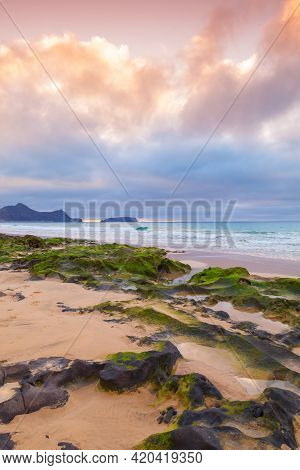 Vertical Landscape Photo With Wet Stones And Green Algae On The Beach Of Porto Santo Island, Madeira