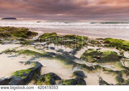 Coastal Landscape With Wet Stones And Green Algae On The Beach Of Porto Santo Island, Madeira Archip