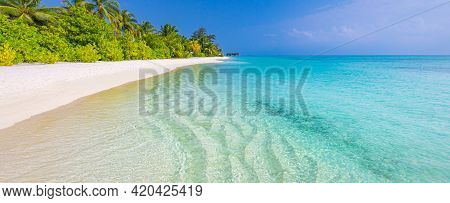 Untouched Tropical Beach Banner On Exotic Island, Coconut Palm Trees With Stunning Ocean Lagoon. Lux