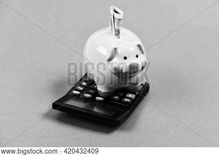 Money Savings. Economics And Finance. Financial Wellbeing. Savings Account. Savings Deposit Is Conve