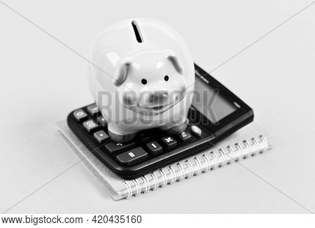Money Saving. Accounting And Payroll. Moneybox With Calculator. Piggy Bank. Income Capital Managemen
