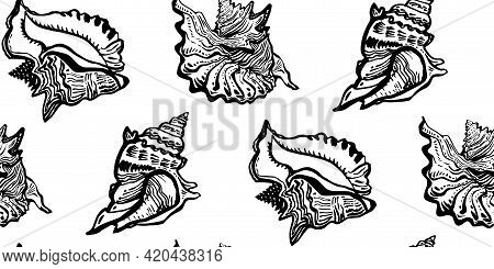 Ocean Black And White Seashell Of Wild Line Freehand Style Black Ink Seamless Pattern. Amazing Inhab