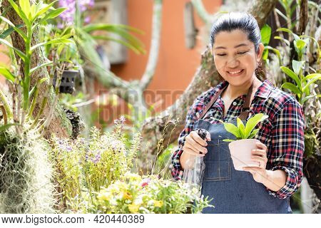 Asian Woman Care  Plant Flower In Garden. People Hobby And Freelance Gardening Indoor At Home, Natur
