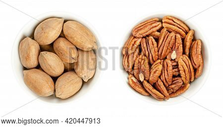 Pecan Nuts, Shelled And Unshelled, In White Bowls. Whole Pecans And Pecan Halves, Seeds And Edible N
