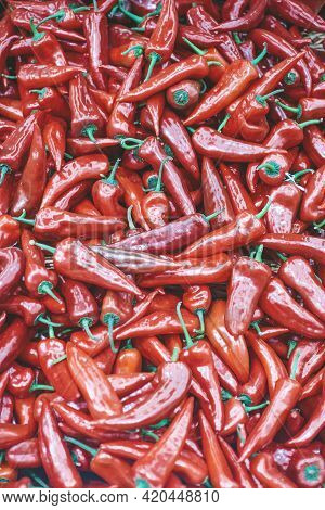Paprika Pepper Background. Fresh Sweet Red Paprika Peppers On The Counter Of The Vegetable Market. H