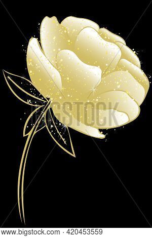 Peony, Vector. Golden Shimmering Garden Flower. Lush Single Peony Rose. Gold Plant On A Black Backgr