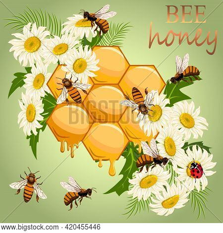 Illustration With Honeycombs And Flowers.flowers, Bees And Honeycomb On A Colored Background In Vect