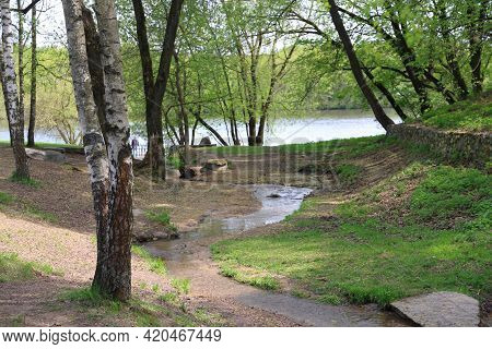 The Stream Meandering Along The Bottom Of The Ravine Between The Trees Will Flow Into The River
