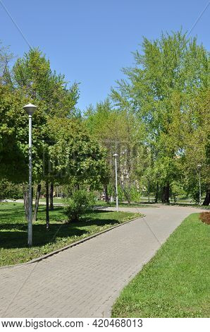 View Of The City Square. Park Alley With Green Grass And Trees. Spring In The City Park.