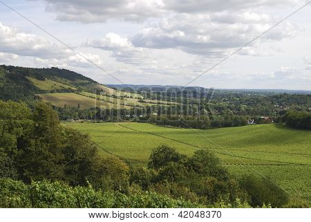 North Downs Landschaft. Surrey. UK