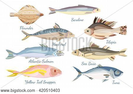 Set With Different Sea Fishes Made In Flat Style