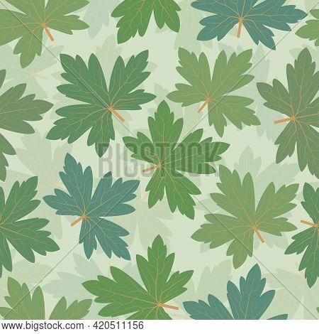 Trendy Decorative Vector Seamless Floral Ditsy Pattern Design Of Geranium Leaves. Elegant Repeating