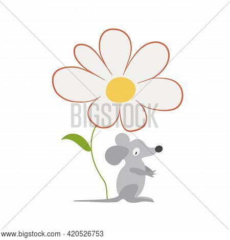 Gray Mouse And Chamomile. White Daisy Flower With A Yellow Center. Cartoon Character, Funny Forest A