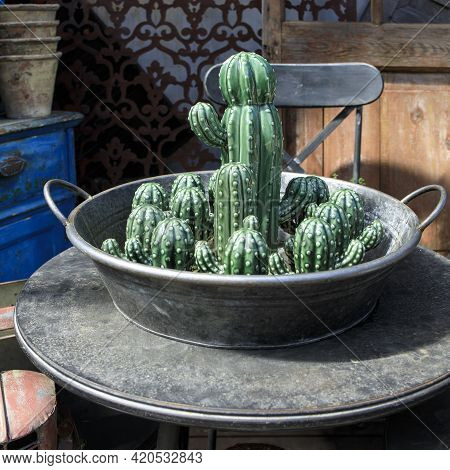 Ceramic Figurines Of Cacti In A Tin Basin On The Table As Decoration Of The Veranda