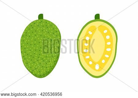Jackfruit Whole And Cut In Half Cute Cartoon Style Vector Illustration, Icons.