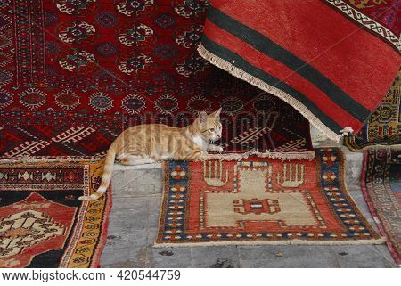 A Beautiful Ginger Short-haired Cat Is Lying On Bright National Carpets In An Oriental Bazaar.