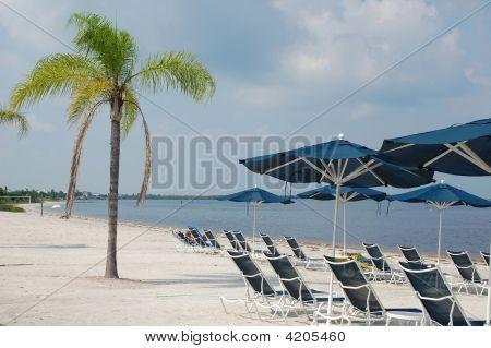 Beach On Little Harbor