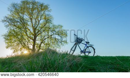 Bike Ride In The Evening To Nature. Beautiful Landscape With Poplar Sun And Bike In The Evening. Bot